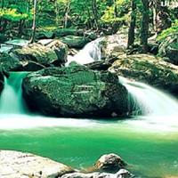 Su İle Yeşilin Gökyüzü İle Buluştuğu Şehir